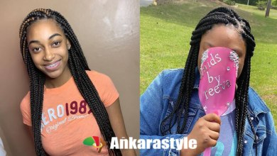 25+ Best And Gorgeous Crochet Box Braids 2020 For Black Women