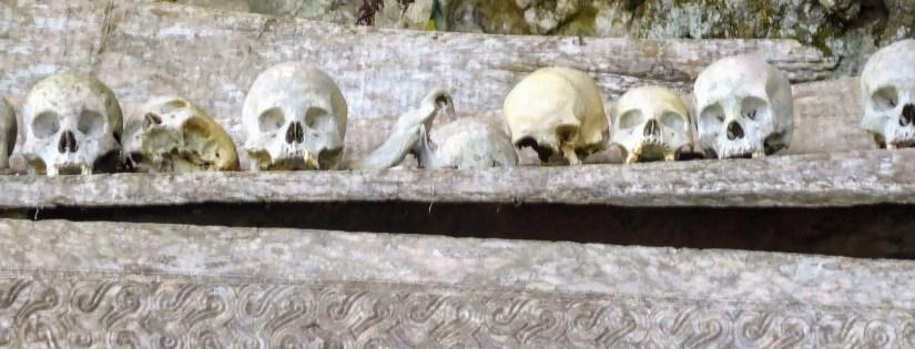 Tanah Torajas Menschen