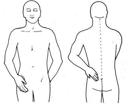 2 und 15: Jin Shin Jyutsu bei Rückenschmerzen