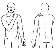 Jin Shin Jyutsu für den Nacken: SES 11 und Ring aus Ringfinger mit Daumen