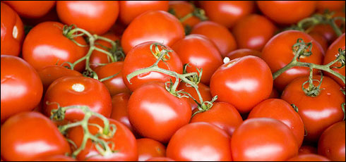 Are Tomatoes a Fruit or a Vegetable?