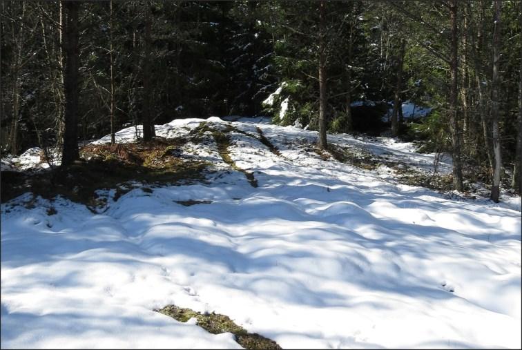 I skogen ligger snön kvar ...