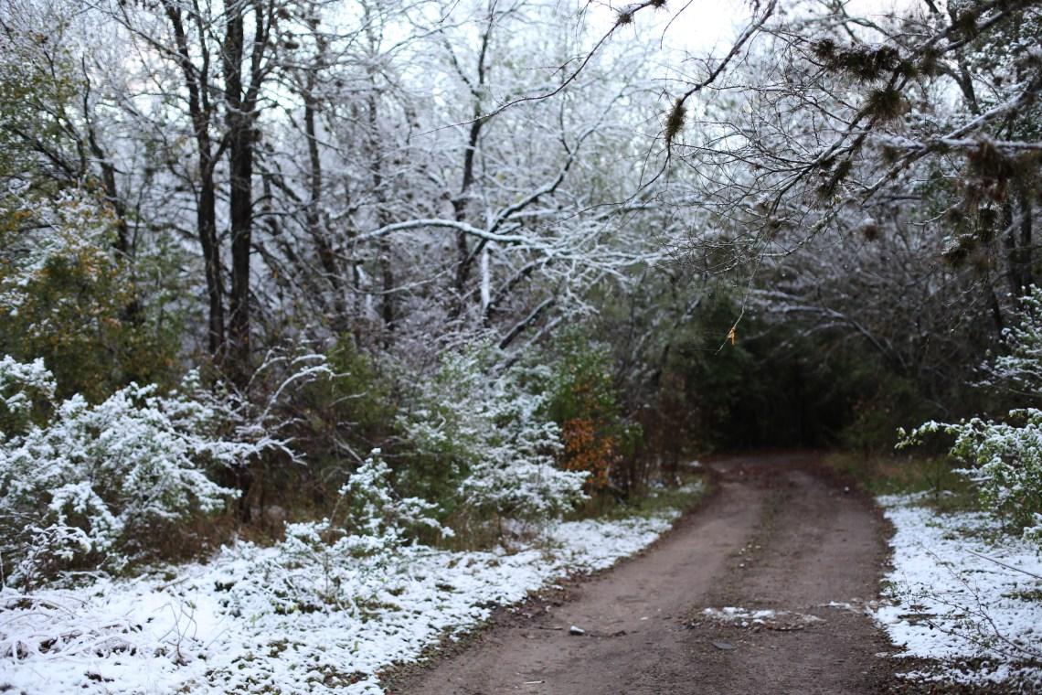 snow day, san antonio, tx
