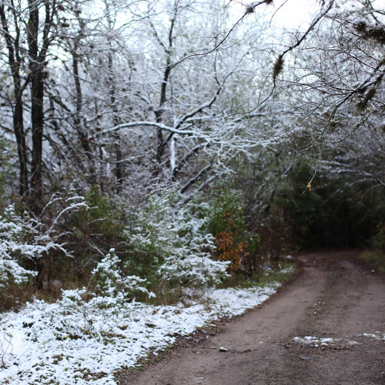 Snow in San Antonio, TX?!