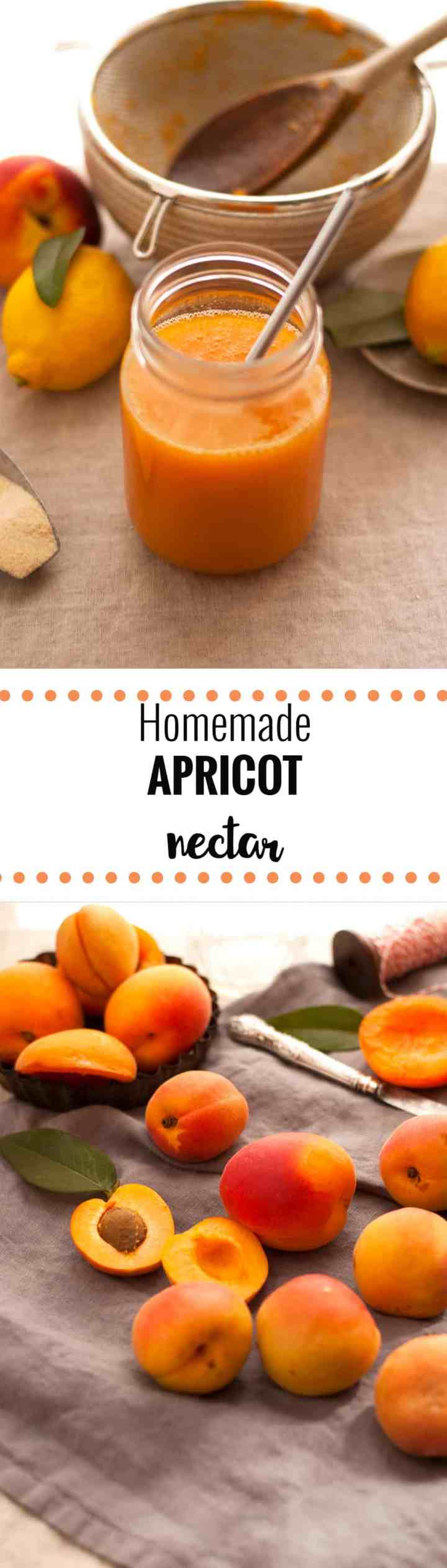 Easy recipe for sweet, juicy and quenching homemade apricot nectar. Made with only 5 ingredients, can be canned and stored for up to 6 months! | via annabanana.co