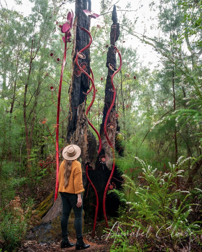 a girl looks up at artwork that winds up a tree trunk to show Understory Art and Nature walk in Northcliffe