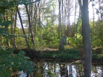 Discovering the River Yerres: La Pierre Fritte, Brunoy