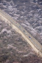 Great Wall (Mutianyu section)