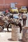Poor donkeys on the road in Marrakech