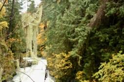 Beaver Creek, Vancouver Island