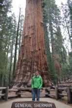 """Ben in front of the """"General Sherman"""" tree in Sequoia National Park"""