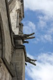 Basilica del Voto Nacional, Quito - instead of gargoyles on the side the church has a variety of animals