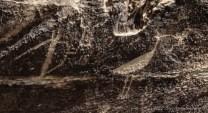 Puerco Pueblo's ancient petroglyphs