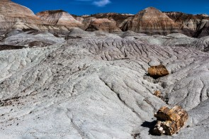 Blue forest trail, Petrified Forest National Park