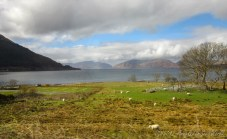 On our way to Loch Ness (2)