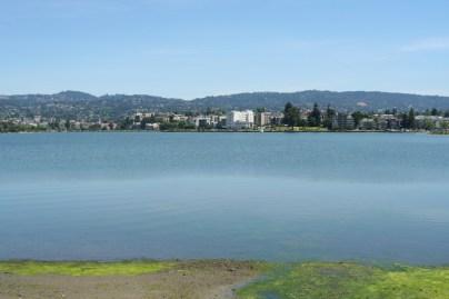 More lakeness.