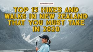 Feature image for Top 15 Hikes And Walks In New Zealand That You Must Take In 2020
