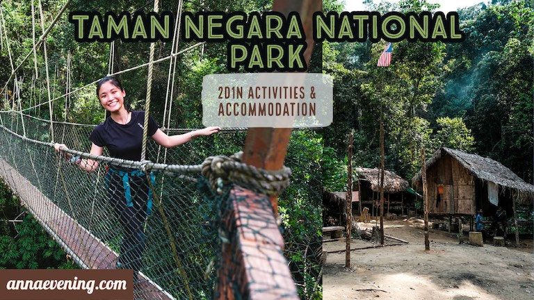 Taman Negara National Park Featured Image