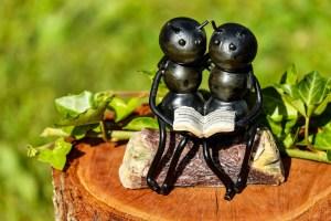 myror läsning bok författare