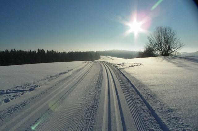 winter-sun-1949429_1280