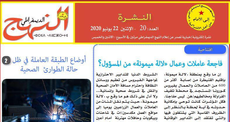 العدد 20 من النشرة الإلكترونية الإخبارية
