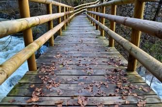 Beautiful Bridge and Fallen Leaves in Dovžanova Soteska, Slovenia