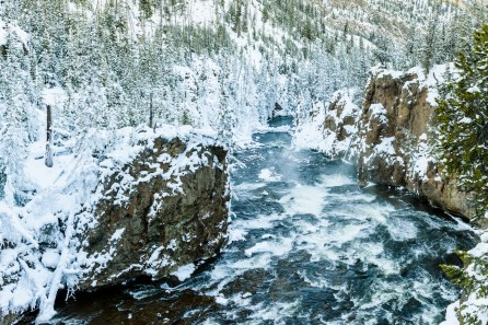 Firehole river flowing through the canyon
