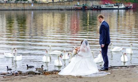 Wedding photo shoot near Vltava