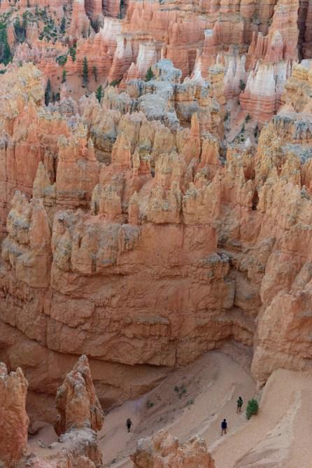 Navajo loop trail after dusk