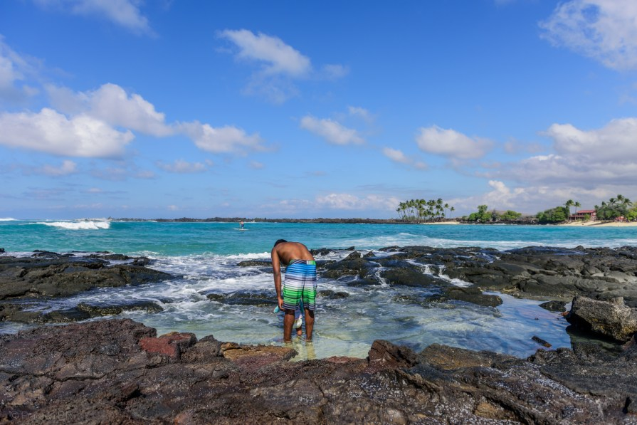 Lava pools on Mahaiʻula Beach