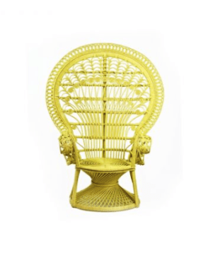 peacock chair, Domayne