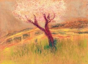Wales_spring_tree_illustration