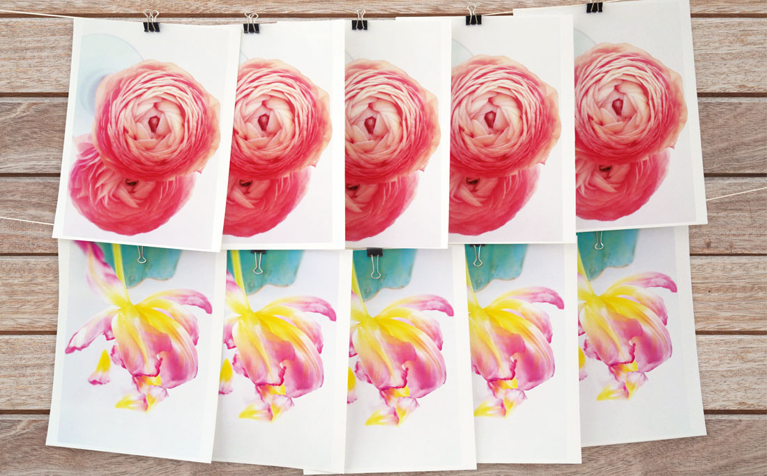 Flower cards - 10 pack