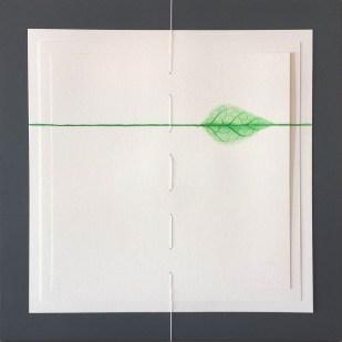 folgia libro disegno linea minimal