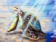 Airlie Beach, street art (foto: Anna Luciani)