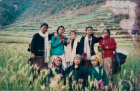 scan0156