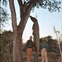 Trophy-Hunting Trump Jr. Sets Sights on 'Re-Shaping' Wildlife Policies