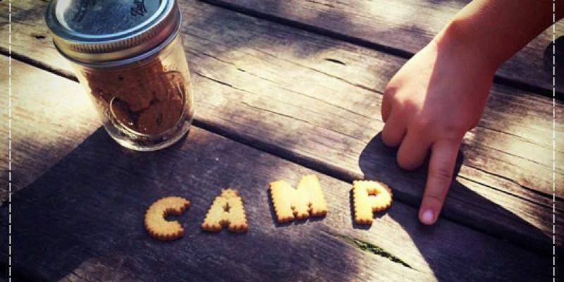 童子軍,就是要露營的呀!@三峽皇后鎮森林....值得紀念的初露