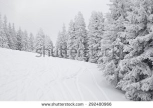 stock-photo-snow-covered-ski-slope-with-fresh-tracks-in-foggy-weather-292400966