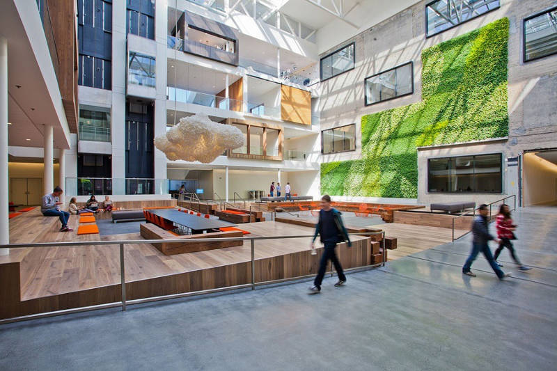 2019/2020 workplace design trends biophilia