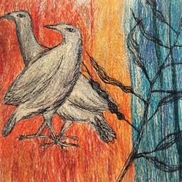pigeons-in-a-bean-field