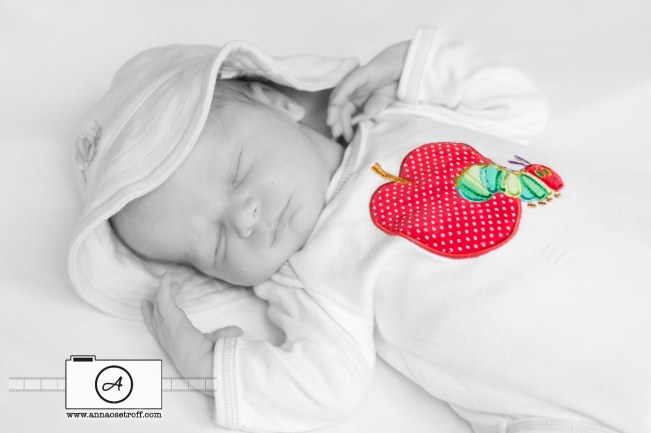Brisbane Newborn Photographer Anna Osetroff Baby Photography Stafford Heights