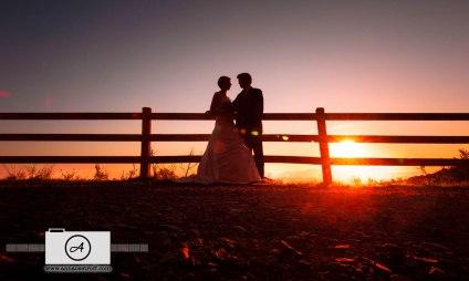 OReillys Wedding Photography Gold Coast Anna Osetroff Photographer