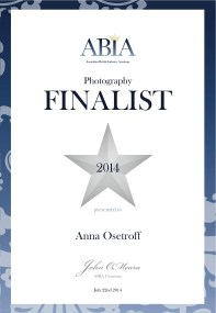ABIA Awards Best Photographer QLD Wedding