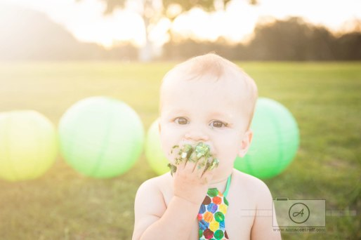 Hungry Caterpillar First Birthday Brisbane Cake Smash Photographer Anna Osetroff-4