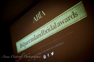 AnnaOsetroffWeddingPhotographerABIAAwards2014-44
