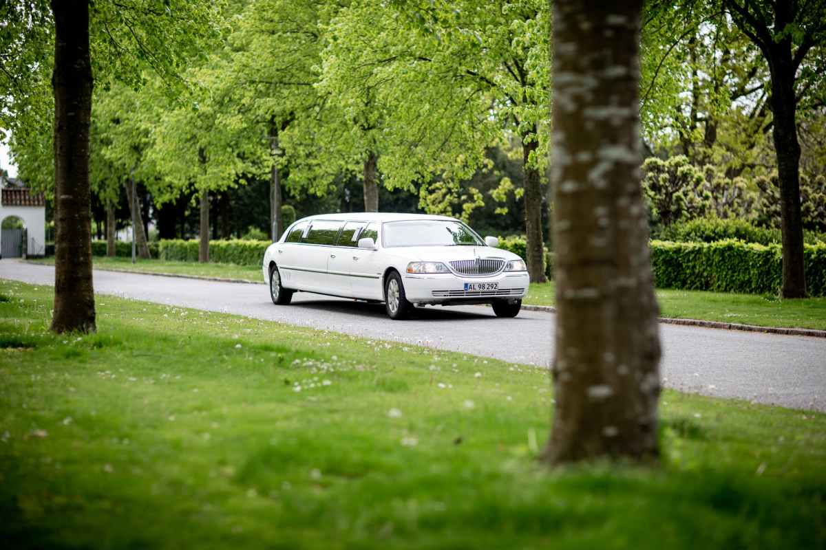 white limousine driving on road