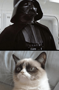 Darth Vader shares the screen with Grumpy Cat