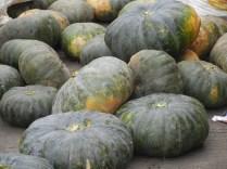 Kalabasa (Kabucha pumpkins)