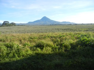 Mt. Matutum and miles of Dole pineapple plantation field. A scenic drive on the way to my grandparents' farm.